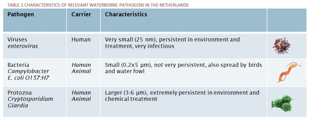 CHARACTERISTICS OF RELEVANT WATERBORNE PATHOGENS IN THE NETHERLANDS