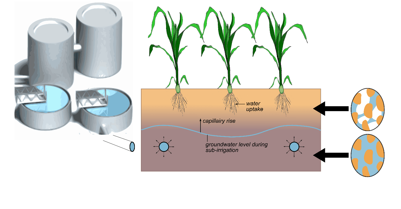 Figure 1: Subirrigation via drains with continuous water supply, with which the water table and the soil moisture regime could be affected actively.